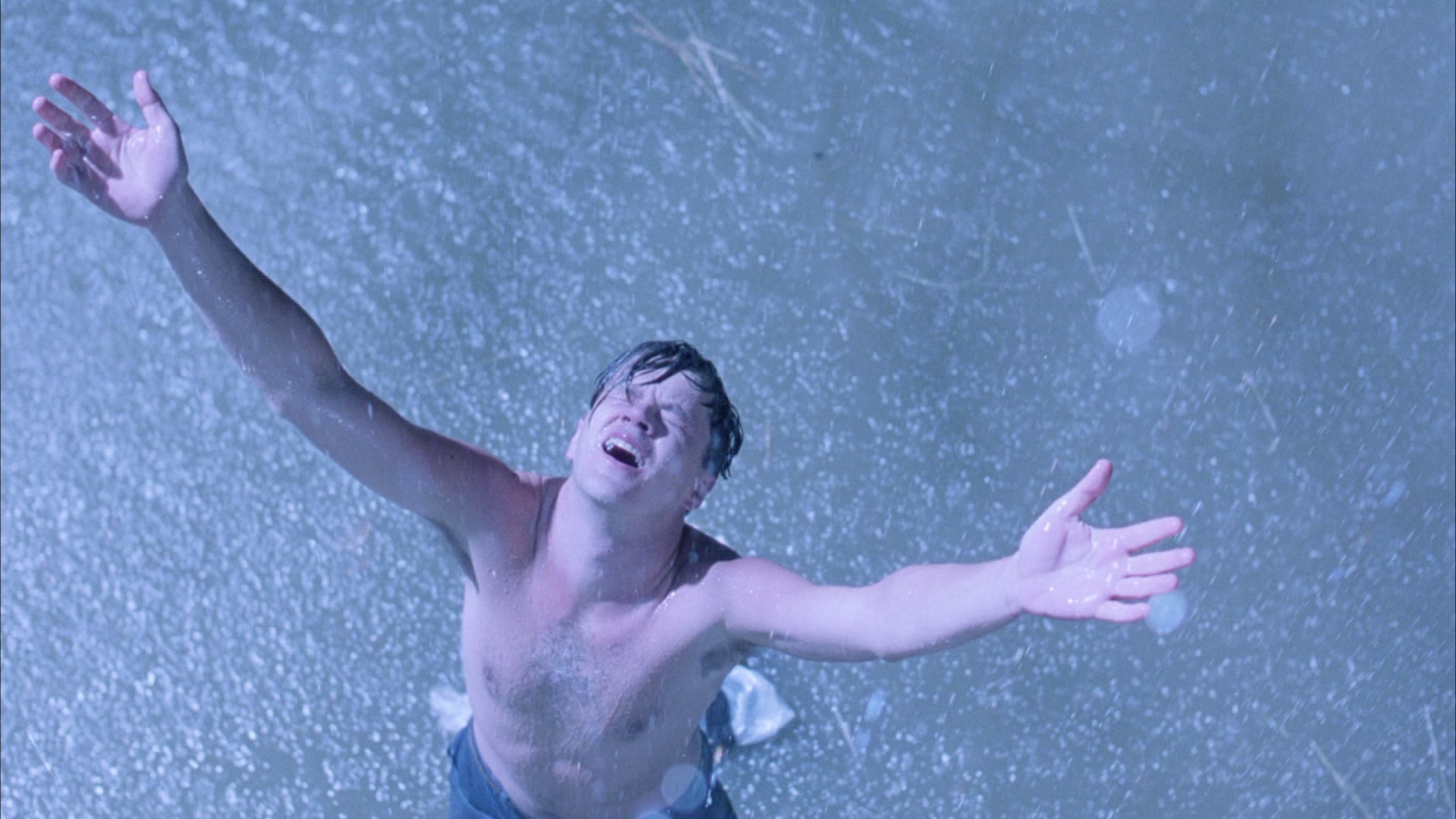 movies that everyone should see the shawshank redemption fogs he