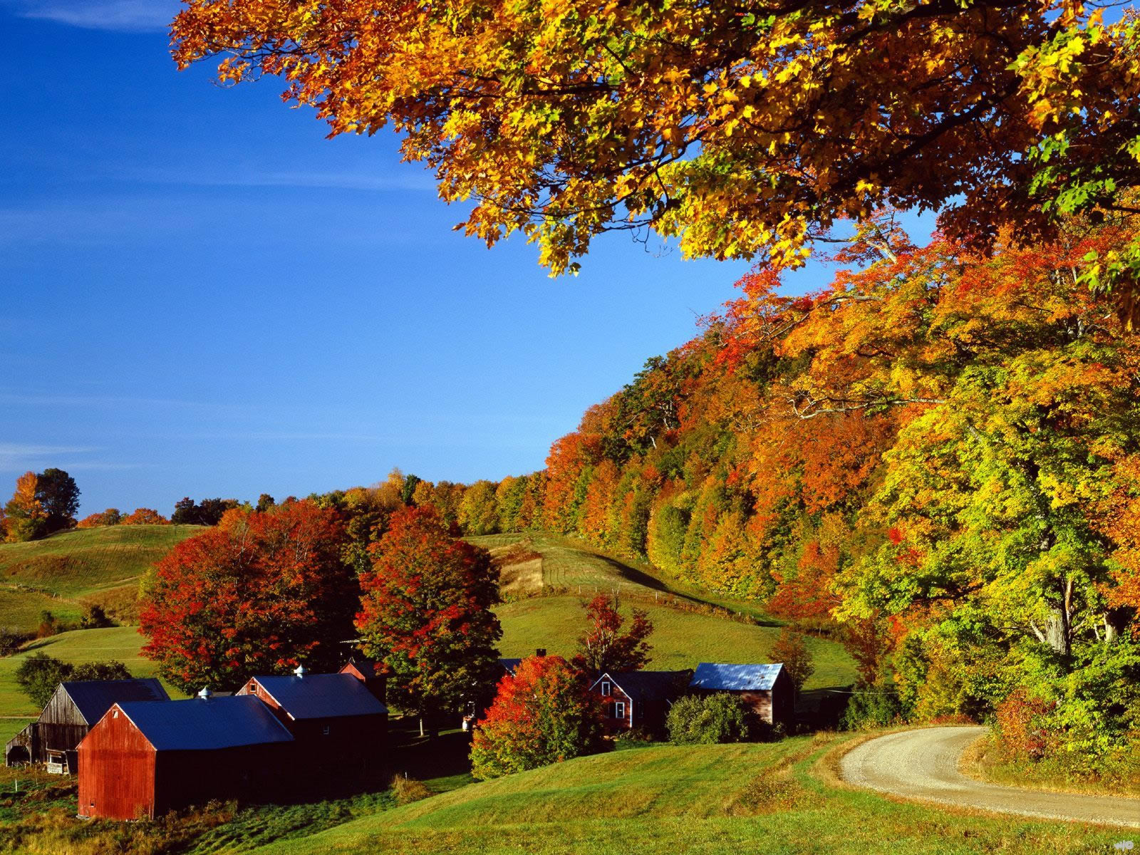 Fantastic Wallpaper Horse Autumn - landscapes-woodstock-in-autumn-vermont  Trends_696411.jpg