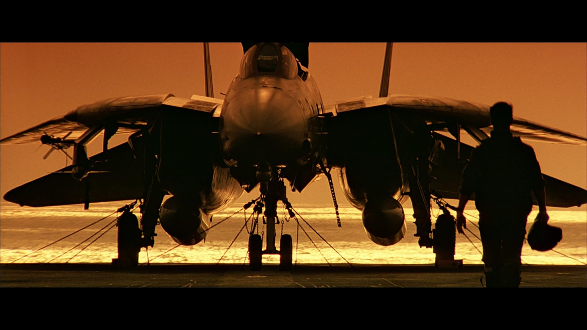 Show de imagens com o Grumman F-14 Tomcat