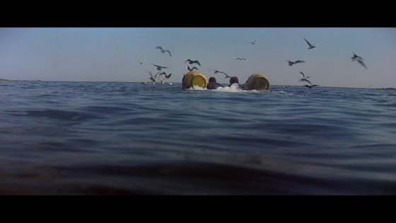 Jaws_Brody_and_Hooper_swimming_in_on_barrels