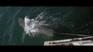 Jaws_overhead_view