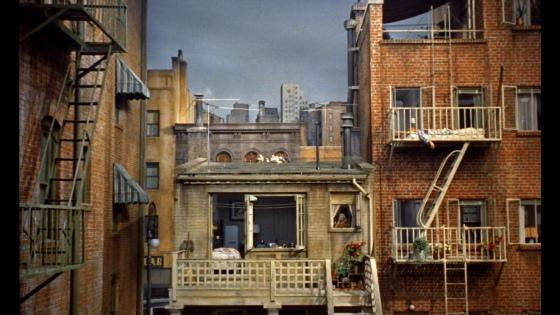 rear_window_apartment_view