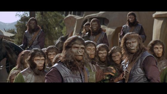 https://fogsmoviereviews.files.wordpress.com/2013/05/damn-dirty-apes-reaction-shot.png?w=560&h=315